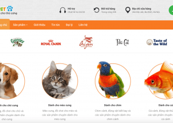 Thiết kế website thú cưng, bán phụ kiện pet